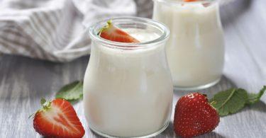 Probiyotik yoğurt